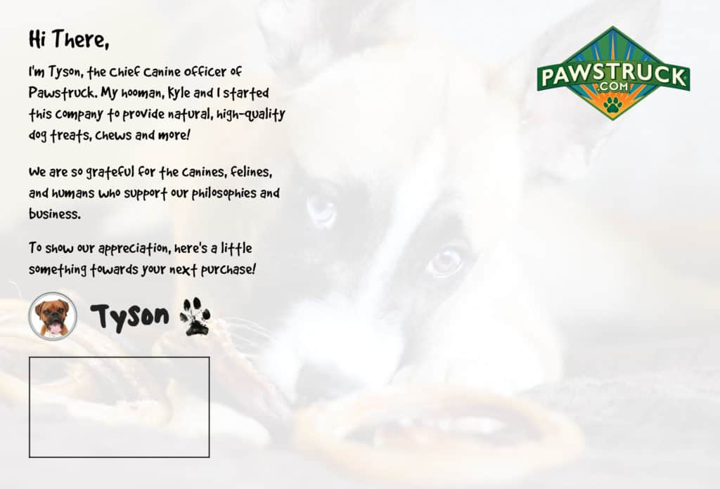 successful postcard design pawstruck reverse